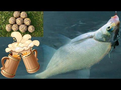 Drunk dla bait carp , bream and crucian carp .