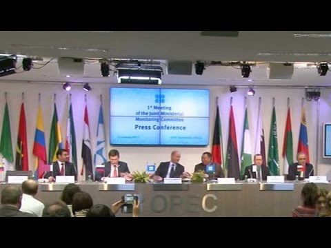 OPEC, non-OPEC countries content with oil output cuts