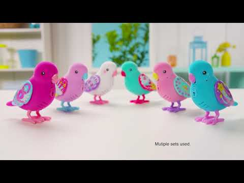 Little Live Pets S7 Bird | 15s Ad
