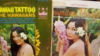 Hawaiian Record Cover Models #2