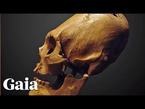 Elongated Paracas Skulls of Peru