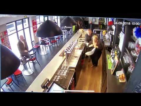 Trending HQ - Racehorse Stumbling Through A Sports Bar