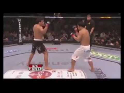 Traditional martial arts in MMA/UFC