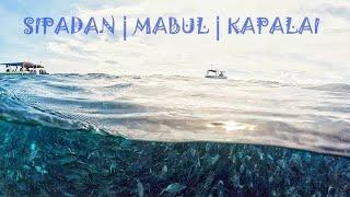 Sipadan Island, Mabul Island, Kapalai Island   Freediving Experience