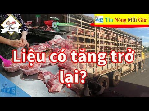 Giá thịt lợn dịp cuối năm và Tết Nguyên đán - Giá thịt lợn liệu có tăng trở lại?   Tin Nóng Mỗi Giờ