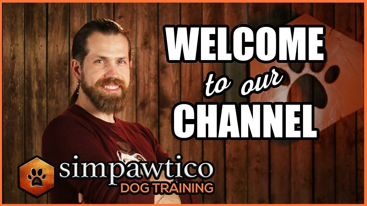 Welcome to the Simpawtico Dog Training YouTube Channel!