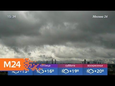 Чего ждать от погоды в ближайшие дни - Москва 24