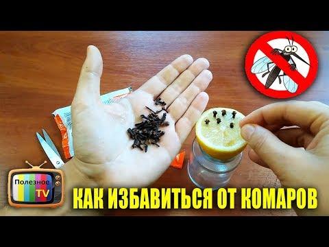 Как быстро избавиться от комаров в комнате подручными средствами