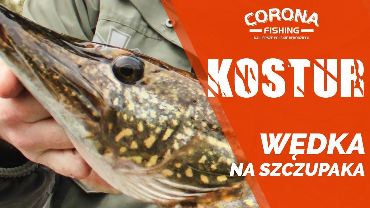 Wędka na szczupaka - Kostur Corona Fishing