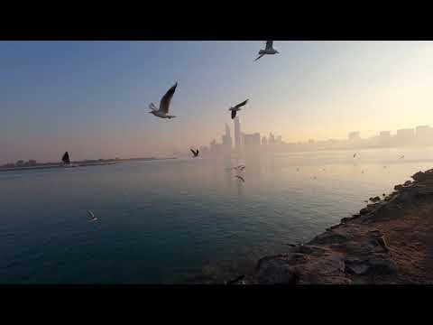 Morning at Abu Dhabi Marina UAE