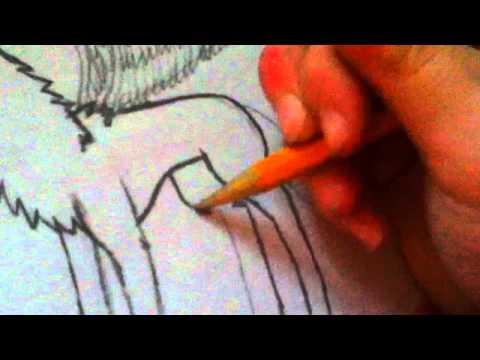 Drawings  Pinterest
