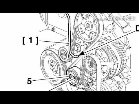 Peugeot 406 1.9 td замена ремня генератора, ролика натяжителя, натяжителя (гитара, виброгаситель) .