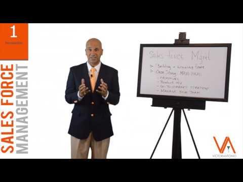 Victor Antonio's Sales Force Management