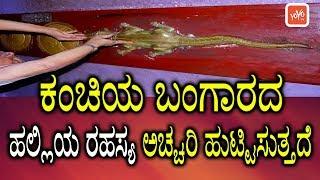 ಕಂಚಿಯ ಬಂಗಾರದ ಹಲ್ಲಿಯ ರಹಸ್ಯ ಅಚ್ಚರಿ ಹುಟ್ಟಿಸುತ್ತದೆ  Kanchi Bangaru Balli Story in Kannada  YOYOTVKannada