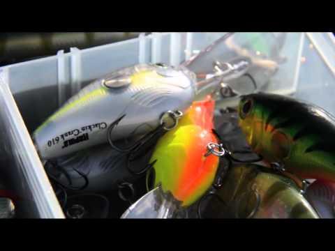 Italian Fishing TV - Rapala In Action - Bass Fishing