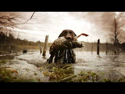Sportsman's Guide Commercial - Share The Thrill (:30)