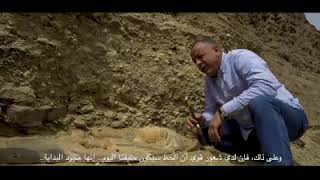 First archeological discovery to be announced and presented online   كشف أثري عبر الإنترنت
