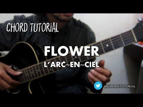 flower - L'Arc-en-Ciel (CHORD)