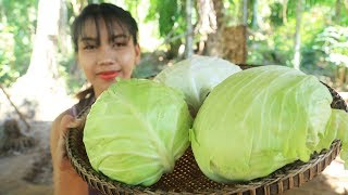 Yummy cooking cabbage recipe - Cooking skill