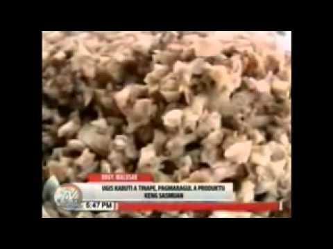 mushroom bread of malusac sasmuan pampanga youtube