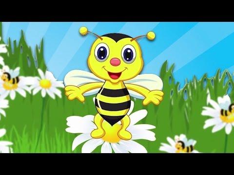 ARI VIZ VIZ VIZ - 8 Farklı Arı Vız Vız Şarkısı Bir Arada