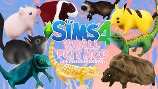 THE SIMS 4- SMALL PETS MOD| CC SHOWCASE/ REVIEW