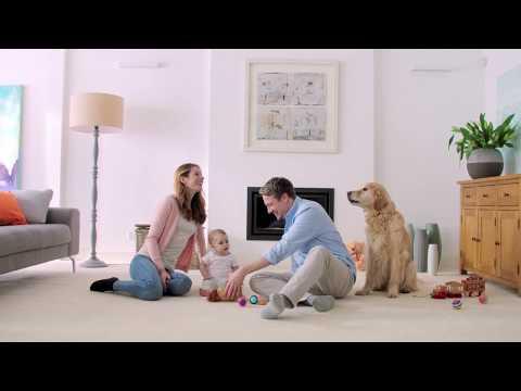 vax-platinum-power-max-carpet-cleaner