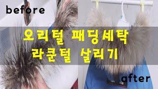 [생활상식] 패딩세탁법과 라쿤털세탁법&라쿤털 살…