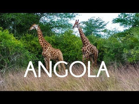 Bru 'n Em's Travel Trunk in Angola