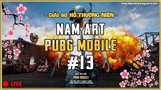 Giải Ao Hồ PUBG Mobile Mở Rộng - Custom NamArtGaming #13
