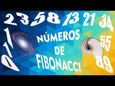 Secuencia de Fibonacci | Episteme i