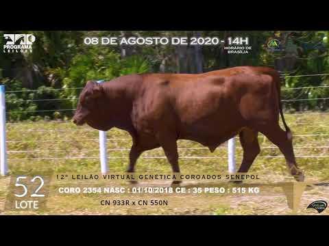 LOTE 52 CORO 2354