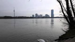 60 секунд с Дуная.Вена