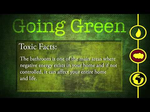 Going Green Quiz Cards