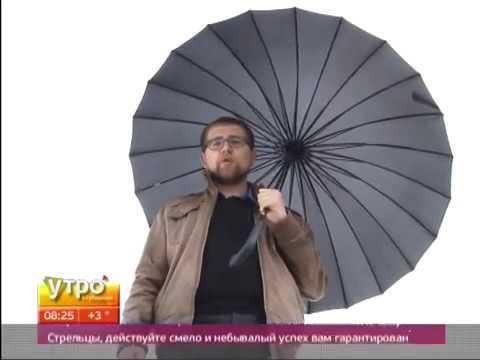 Как выбрать и почистить зонт