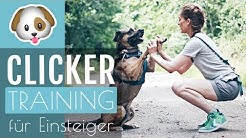 HUNDETRAINING | Anleitung CLICKERTRAINING Hund & Katze
