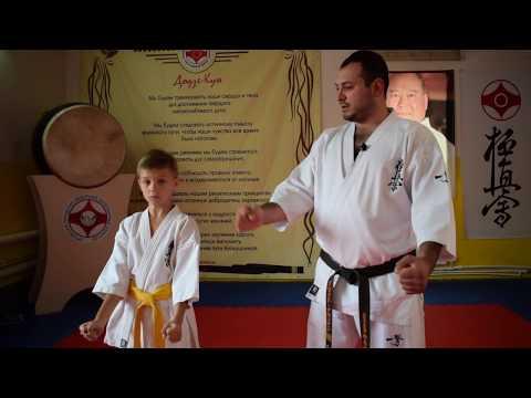 Уроки каратэ для начинающих видео скачать