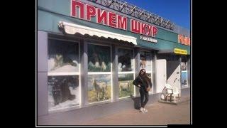 Демотиваторы по русски.Смешные и веселые. Самые сливки !!! Подборка №21