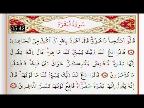 Saad Al Ghamidi | Surah Al Baqarah: 49-83