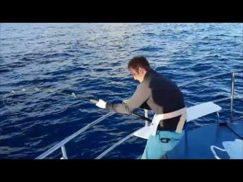 Big Game Fishing Tenerife Playa De Las Americas, Los Cristianos