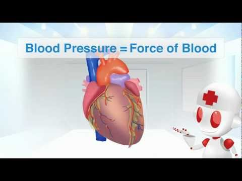 Hypertension and the Mechanism of Blood Pressure