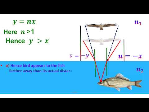 REFRACTION LIGHT AT CURVED SURFACES - BIRD AND FISH PROBLEM