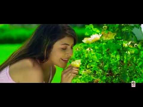 oh shive di kitab wargi new love ❤️ romantic 💑 whatsapp status video