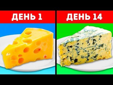 39 ЛАЙФХАКОВ С
