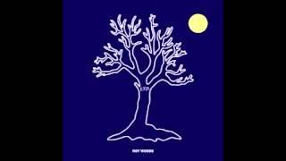 Drama (Instrumental) Feat. Drake - Roy Woods