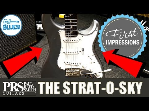 PRS Silver Sky Electric Guitar First Impressions with Dr. Ric