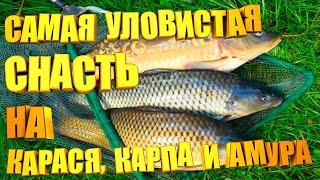рыбалка карась карп сазан амур донка Самая уловистая донная снасть на карпа карася и амура