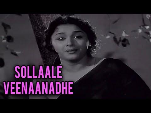 Sollaale Veenaanadhe Full Song | ராஜ ராணி | Raja Rani Tamil Movie Song | Sivaji Ganesan | Padmini