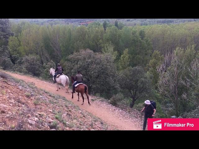 Camino de San Salvador, 1: León-La Robla