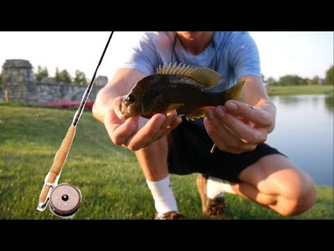 VINTAGE FLY FISHING Challenge!!!